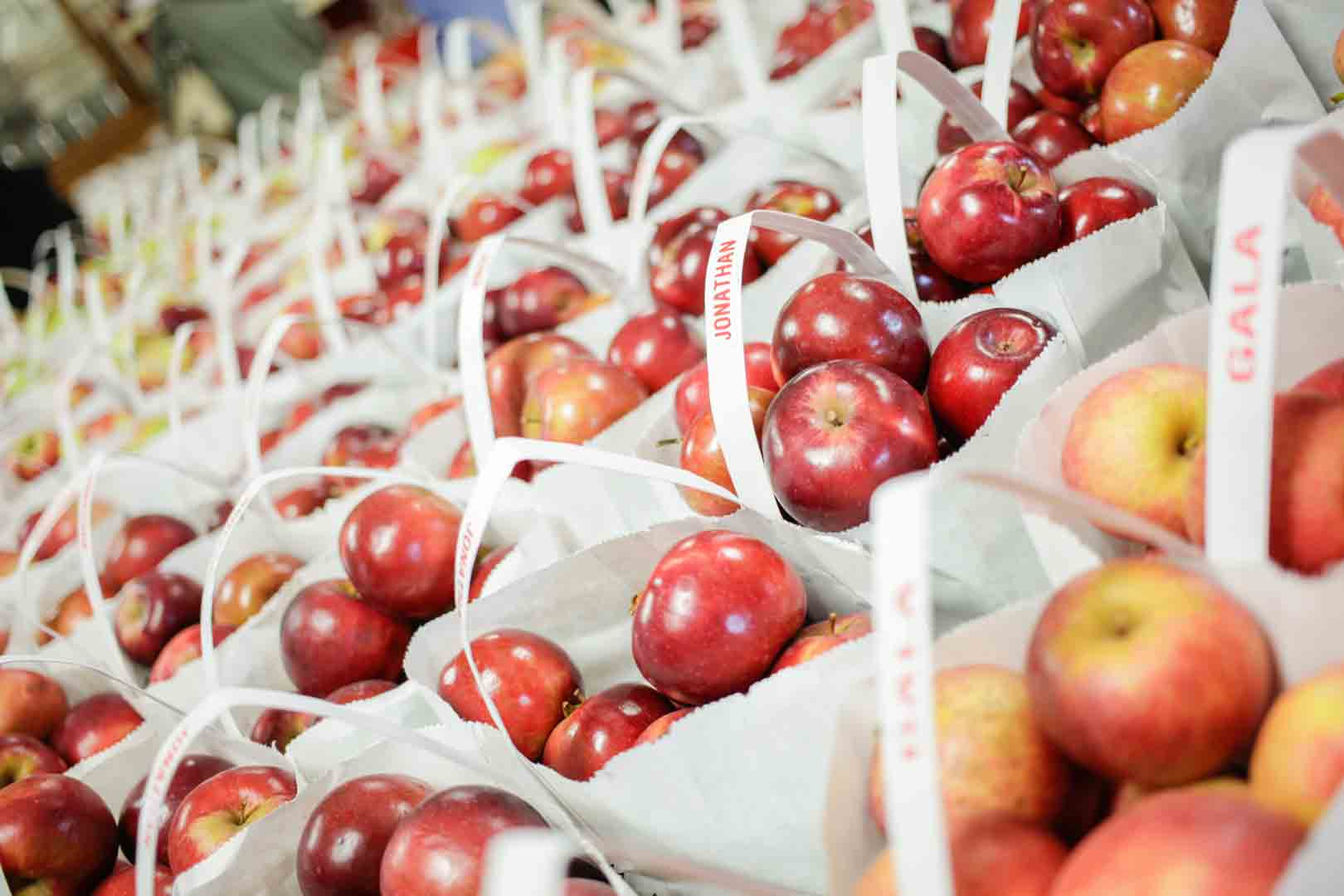 Varieties of apples available for purchase based on season at Plymouth Cider Mill.